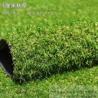仿真草坪,人造草坪,秋草