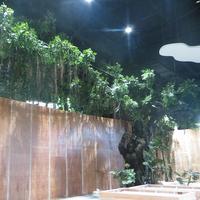长隆造景室内仿真榕树