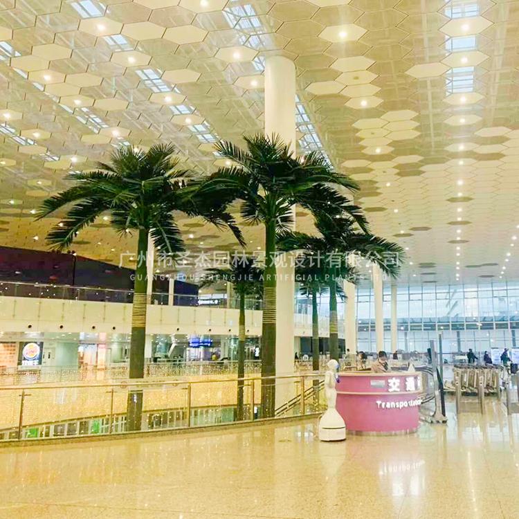 机场仿真大王椰子树2.jpg