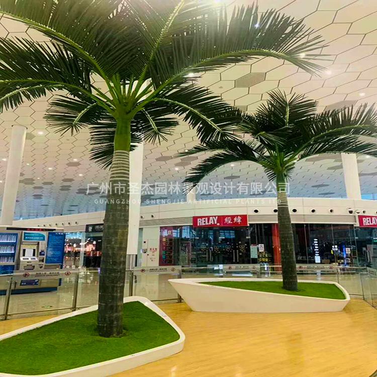 机场仿真大王椰子树3.jpg