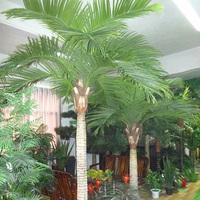 沈阳仿真椰子树展厅