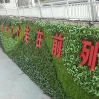 行道标语植物墙