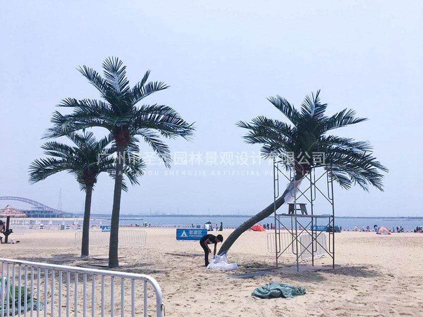 宁波万人沙滩圣杰仿真椰子树造景.jpg