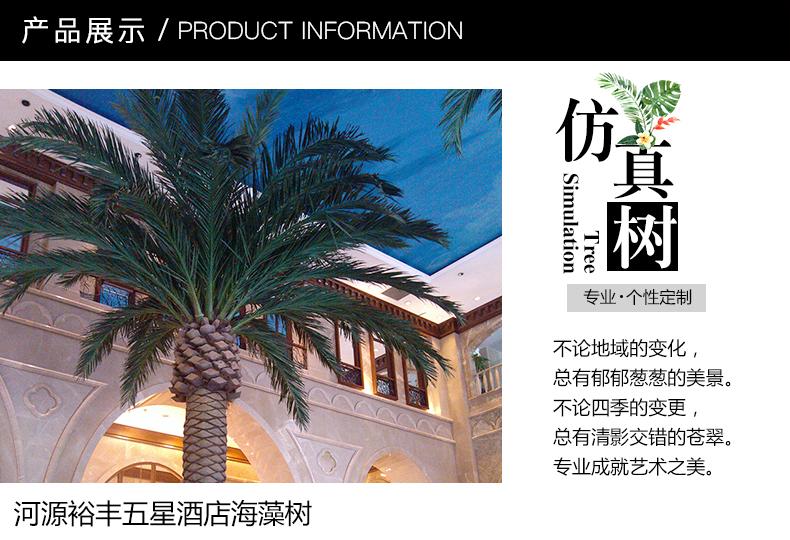 棕榈树3_01.jpg