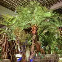 室内仿真桫椤树造景