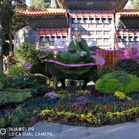 寺庙仙人景观绿雕