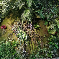 简约生态植物墙