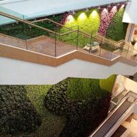 室内楼梯植物墙