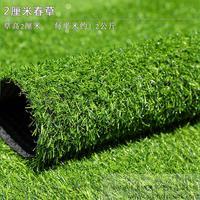 仿真草坪,人造草坪-春草