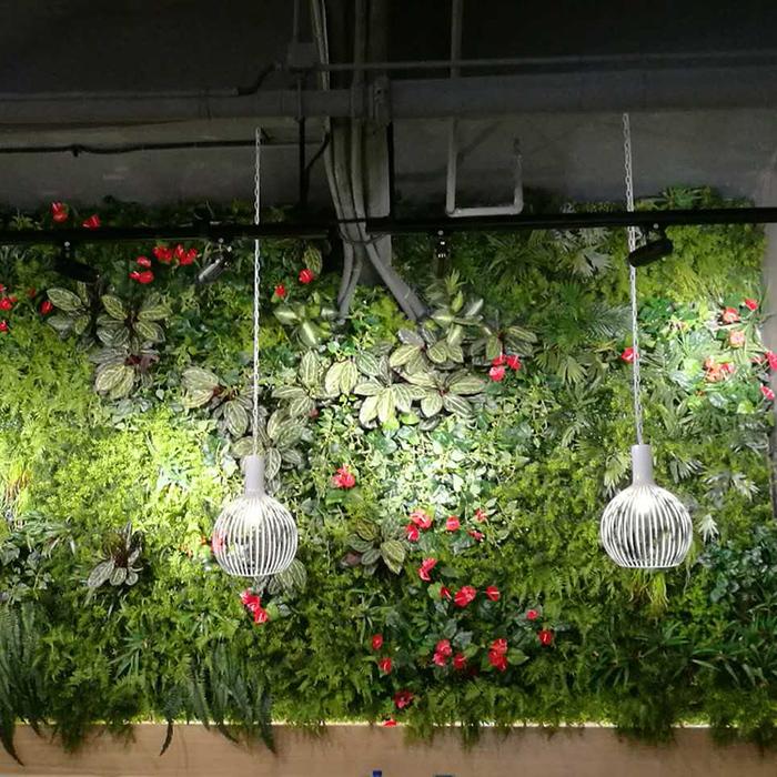 室内生态植物墙