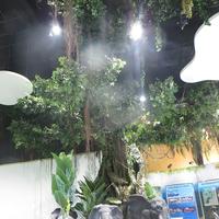 室内假山榕树造景