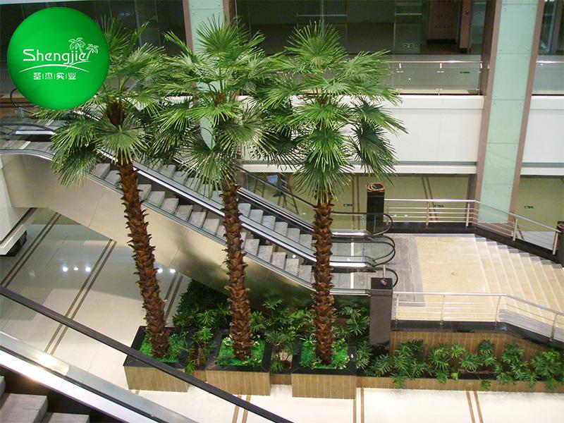 机场仿真棕榈树