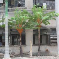 室外仿真桫椤树