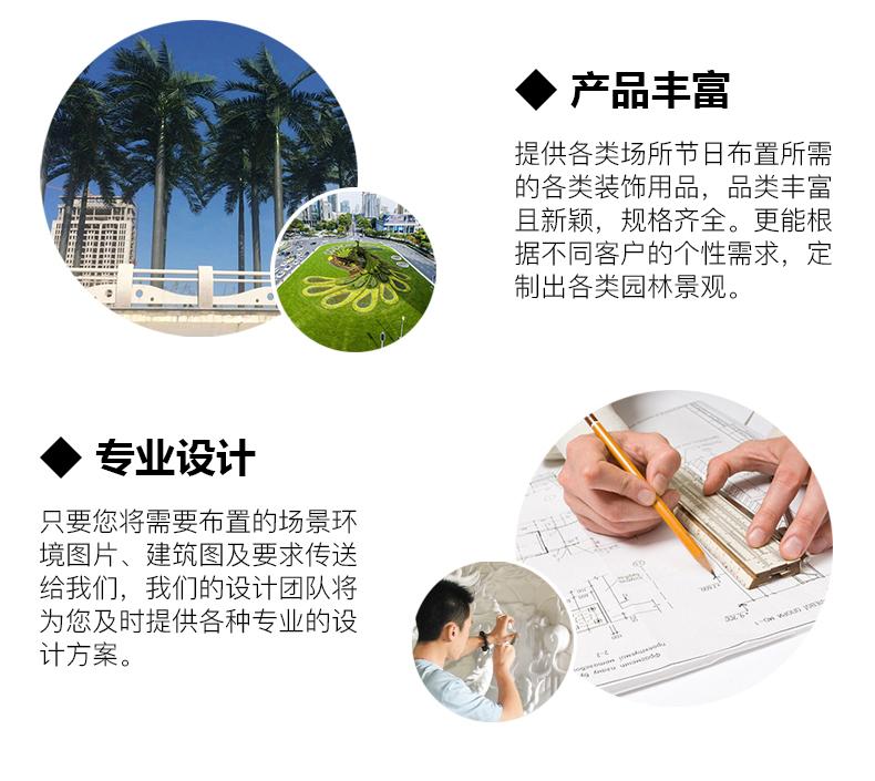 海藻树详情2.jpg