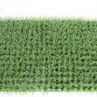 地表草休闲草皮