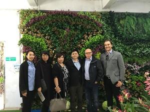 圣杰仿真植物与澳大利亚客户