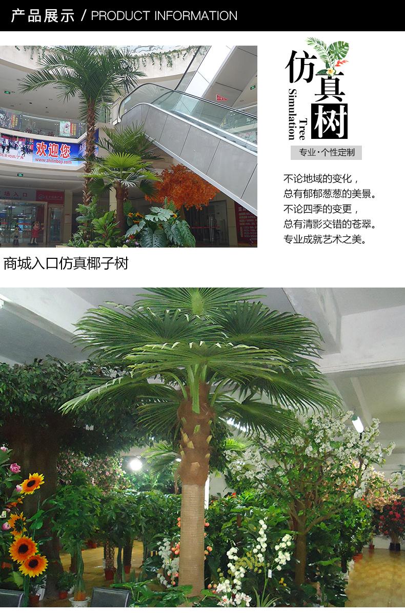椰子树-3_01.jpg