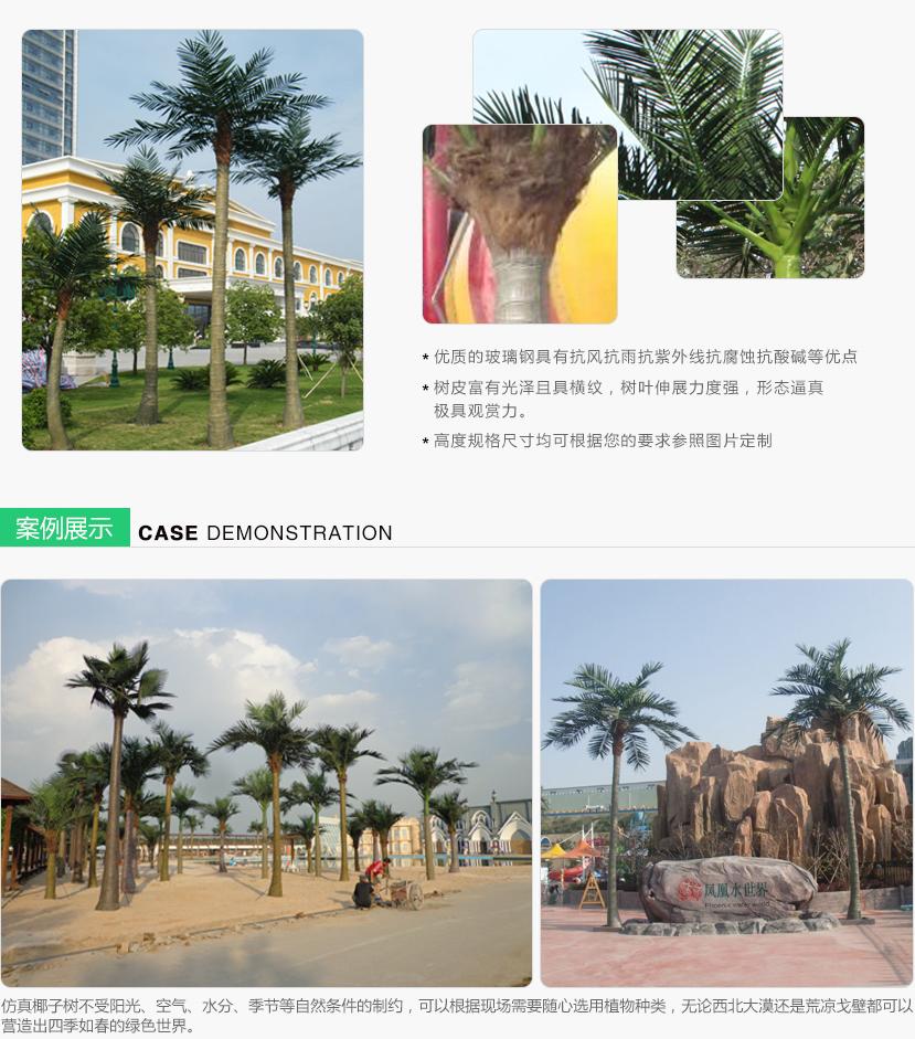 椰子树_02.jpg