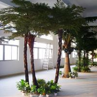 展厅仿真桫椤树02