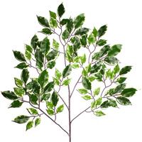 PE仿真榕树叶