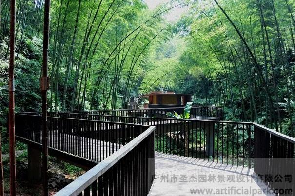 竹子景观.jpg