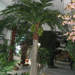室内仿真椰子树