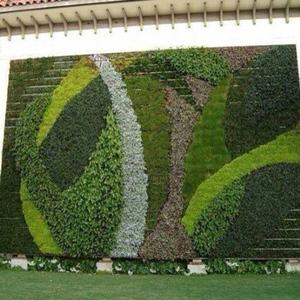 图案植物墙