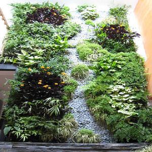 室内攀岩植物墙