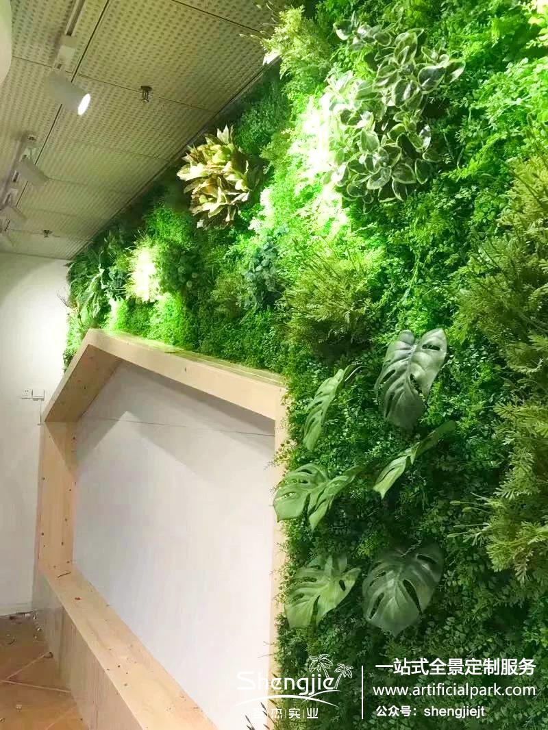 万科嘉园神龙幼儿园仿真植物墙案例分享