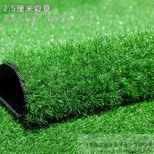仿真草坪,人造草坪-夏草