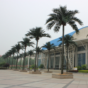 学校仿真椰子树安装