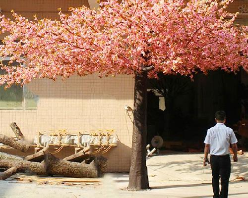 车间樱花树