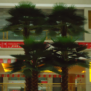 江苏珠宝广场仿真棕榈树02