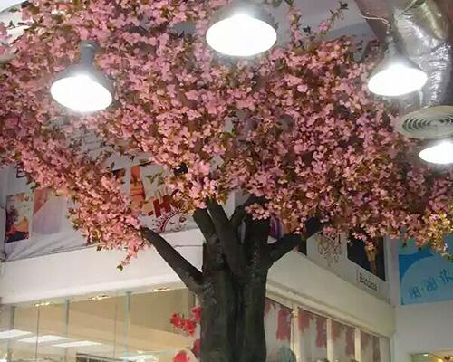 室内樱花树