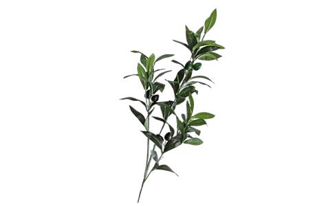 仿真橄榄树叶