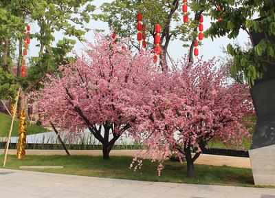 仿真桃花树