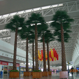 武汉天河机场仿真棕榈树