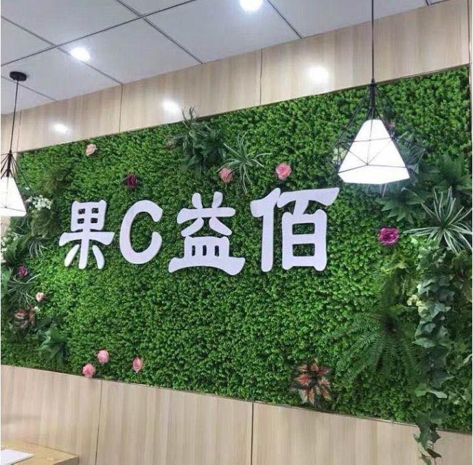 仿真植物墙PVC安装.jpg