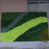仿真绿植墙,植物墙效果图,绿植墙装饰