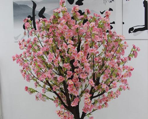办公室樱花树