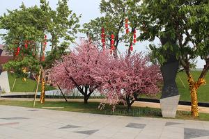 佛山海逸·桃花源记仿真桃花树装饰