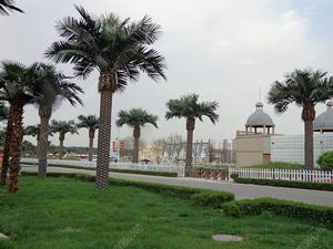 北京润正庄园仿真椰子树、海藻树造景
