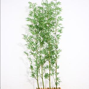 2米熏蒸金丝竹
