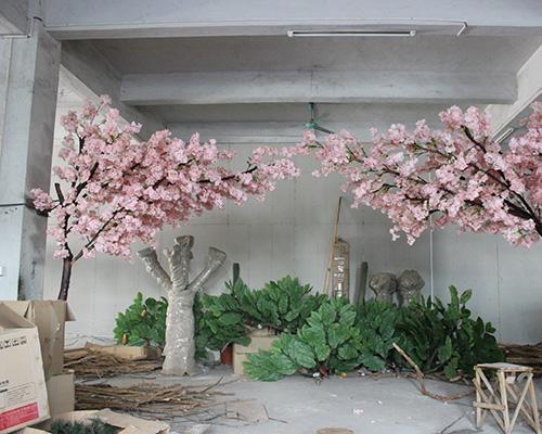 拱门樱花树